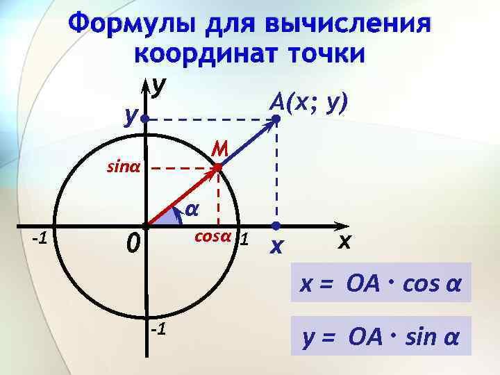 Формулы для вычисления координат точки y А(х; у) y M sinα α -1 cosα