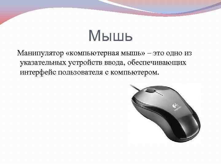 Мышь Манипулятор «компьютерная мышь» – это одно из указательных устройств ввода, обеспечивающих интерфейс пользователя