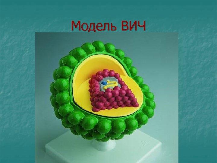 Модель ВИЧ