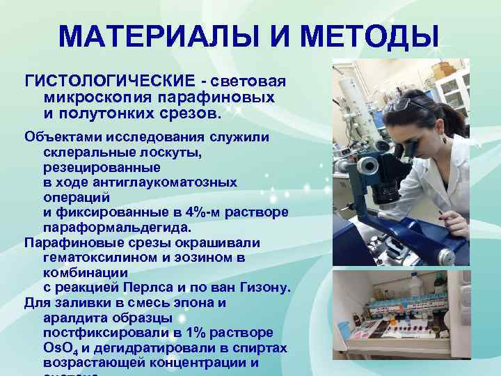 МАТЕРИАЛЫ И МЕТОДЫ ГИСТОЛОГИЧЕСКИЕ - световая микроскопия парафиновых и полутонких срезов. Объектами исследования служили