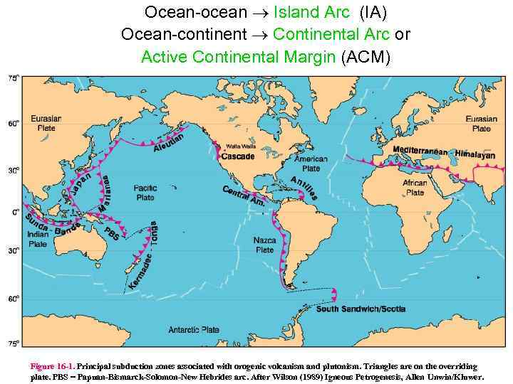 Ocean ocean Island Arc (IA) Ocean continent Continental Arc or Active Continental Margin (ACM)