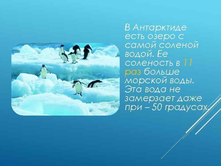В Антарктиде есть озеро с самой соленой водой. Ее соленость в 11 раз больше