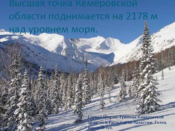 Высшая точка Кемеровской области поднимается на 2178 м над уровнем моря. Горная Шория. Граница