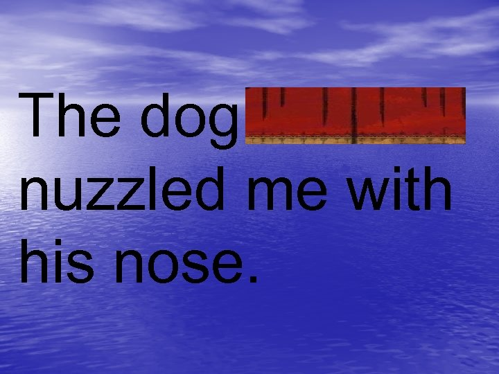 The dog nuzzled me with his nose.