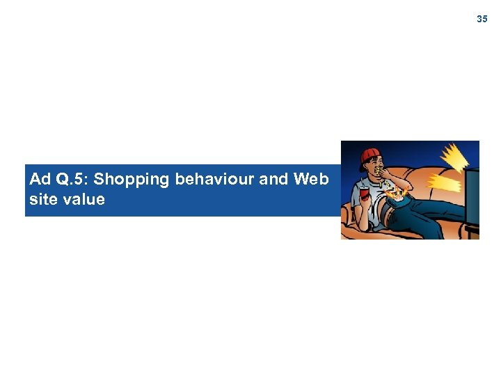 35 Ad Q. 5: Shopping behaviour and Web site value