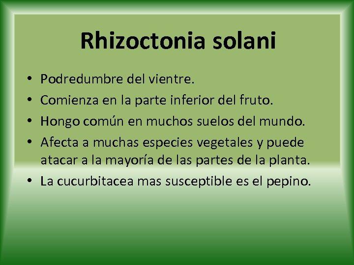 Rhizoctonia solani Podredumbre del vientre. Comienza en la parte inferior del fruto. Hongo común