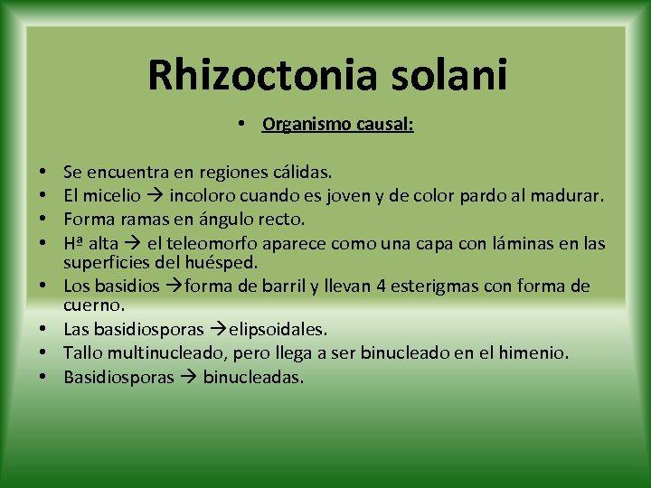 Rhizoctonia solani • Organismo causal: • • Se encuentra en regiones cálidas. El micelio