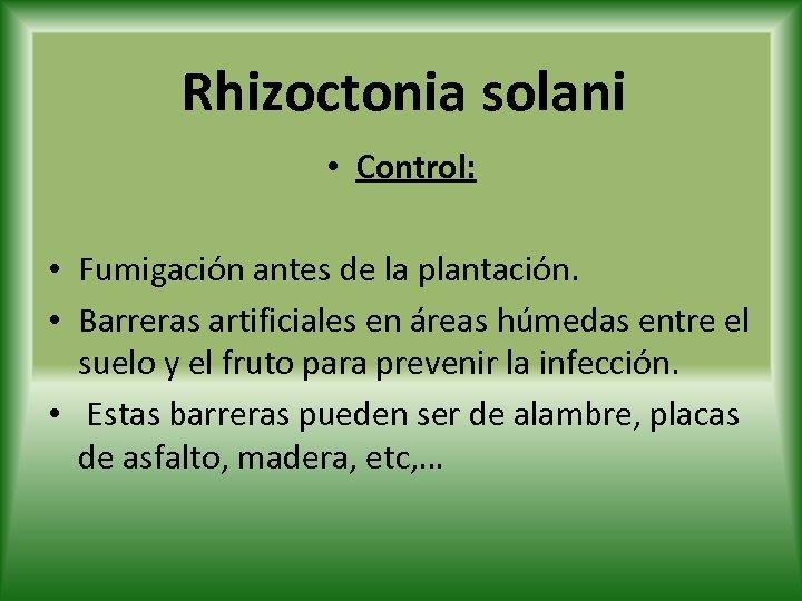 Rhizoctonia solani • Control: • Fumigación antes de la plantación. • Barreras artificiales en