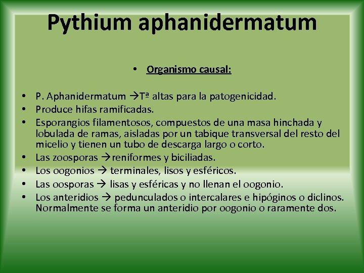 Pythium aphanidermatum • Organismo causal: • P. Aphanidermatum Tª altas para la patogenicidad. •