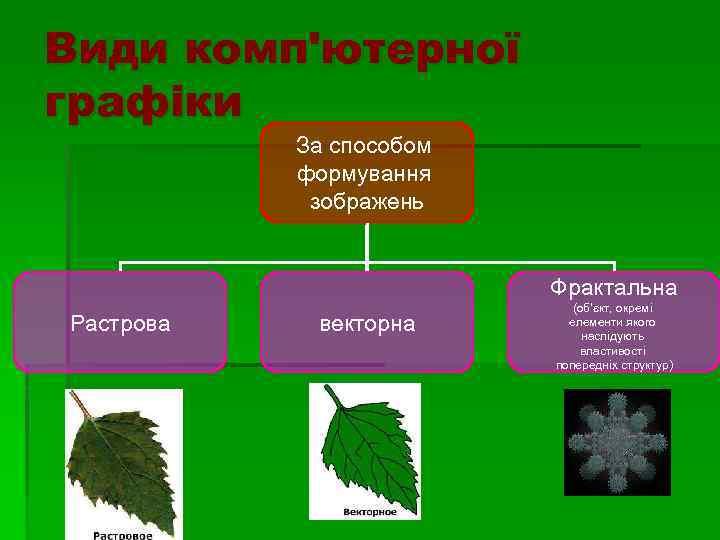 Види комп'ютерної графіки За способом формування зображень Фрактальна Растрова векторна (об'єкт, окремі елементи якого