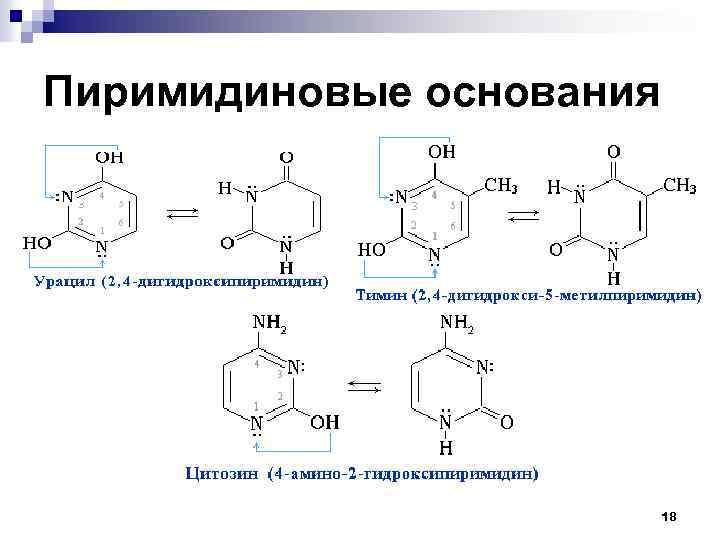 Пиримидиновые основания 18