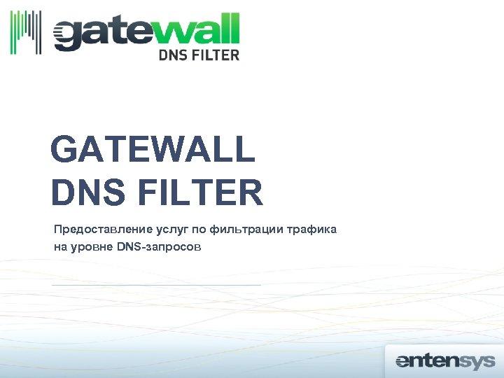 GATEWALL DNS FILTER Предоставление услуг по фильтрации трафика на уровне DNS-запросов