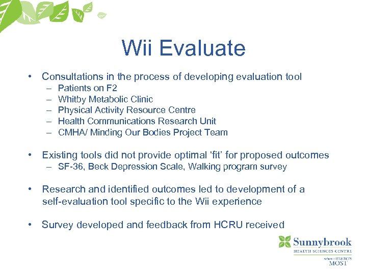 Wii Evaluate • Consultations in the process of developing evaluation tool – – –