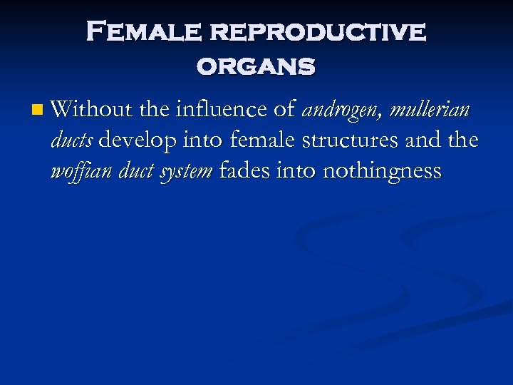 Female reproductive organs n Without the influence of androgen, mullerian ducts develop into female