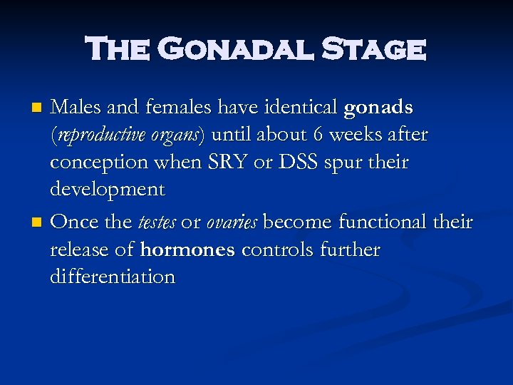 The Gonadal Stage Males and females have identical gonads (reproductive organs) until about 6