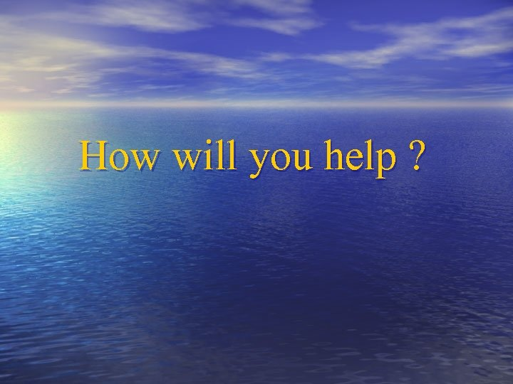 How will you help ?