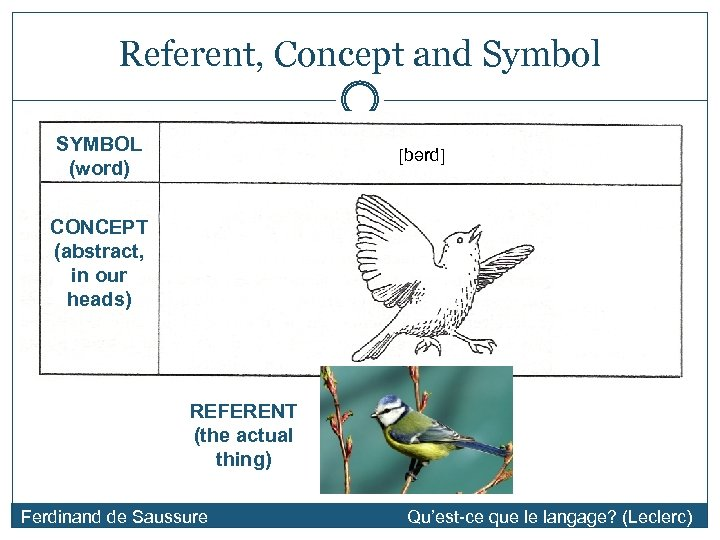 Referent, Concept and Symbol SYMBOL (word) [bərd] CONCEPT (abstract, in our heads) REFERENT (the