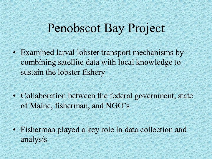 Penobscot Bay Project • Examined larval lobster transport mechanisms by combining satellite data with