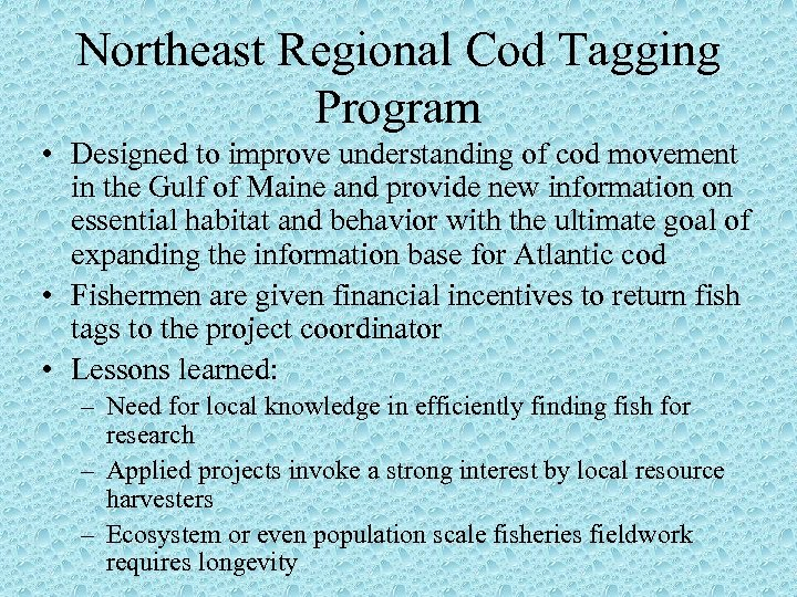 Northeast Regional Cod Tagging Program • Designed to improve understanding of cod movement in