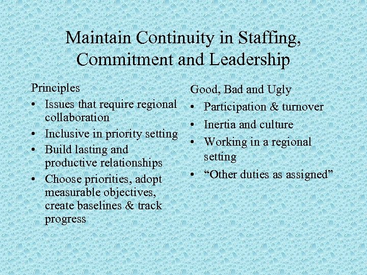 Maintain Continuity in Staffing, Commitment and Leadership Principles • Issues that require regional collaboration