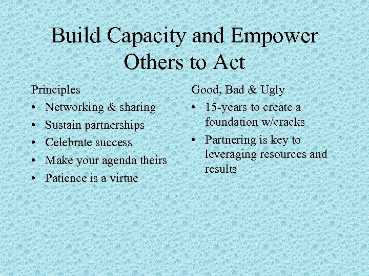 Build Capacity and Empower Others to Act Principles • Networking & sharing • Sustain