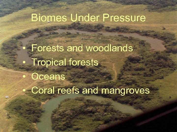 Biomes Under Pressure • • Forests and woodlands Tropical forests Oceans Coral reefs and