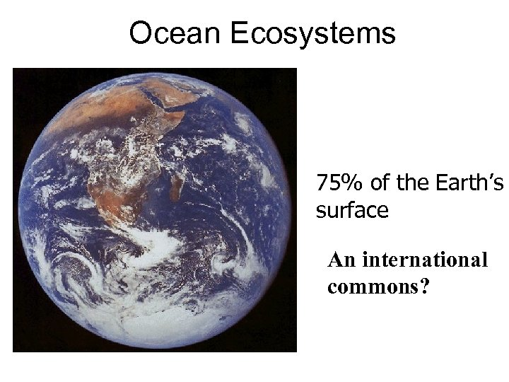 Ocean Ecosystems 75% of the Earth's surface An international commons?