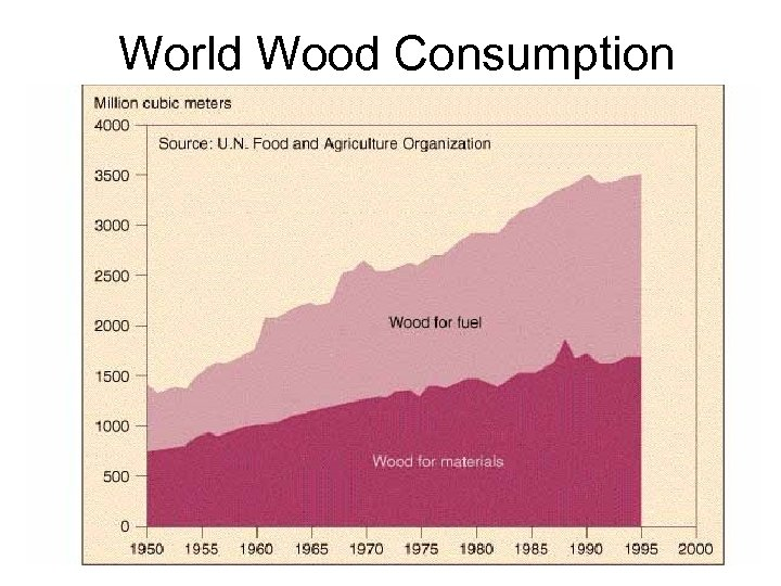 World Wood Consumption