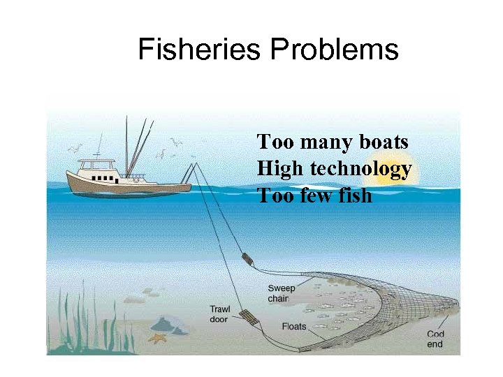 Fisheries Problems Too many boats High technology Too few fish