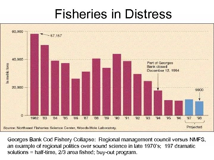 Fisheries in Distress Georges Bank Cod Fishery Collapse: Regional management council versus NMFS, an