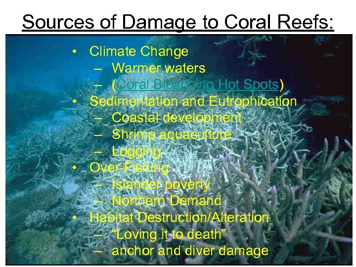 Sources of Damage to Coral Reefs: • Climate Change – Warmer waters – (Coral