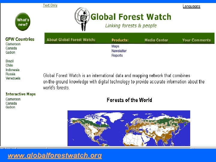 www. globalforestwatch. org