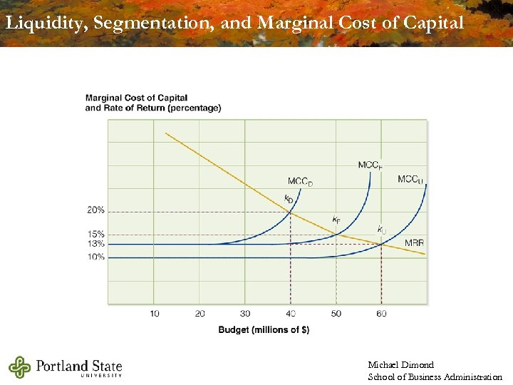 Liquidity, Segmentation, and Marginal Cost of Capital Michael Dimond School of Business Administration