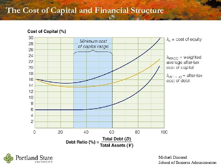 The Cost of Capital and Financial Structure Michael Dimond School of Business Administration