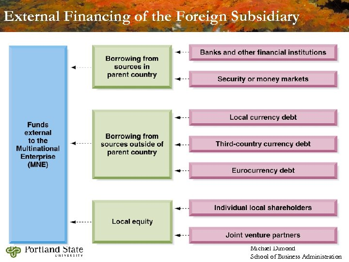 External Financing of the Foreign Subsidiary Michael Dimond School of Business Administration