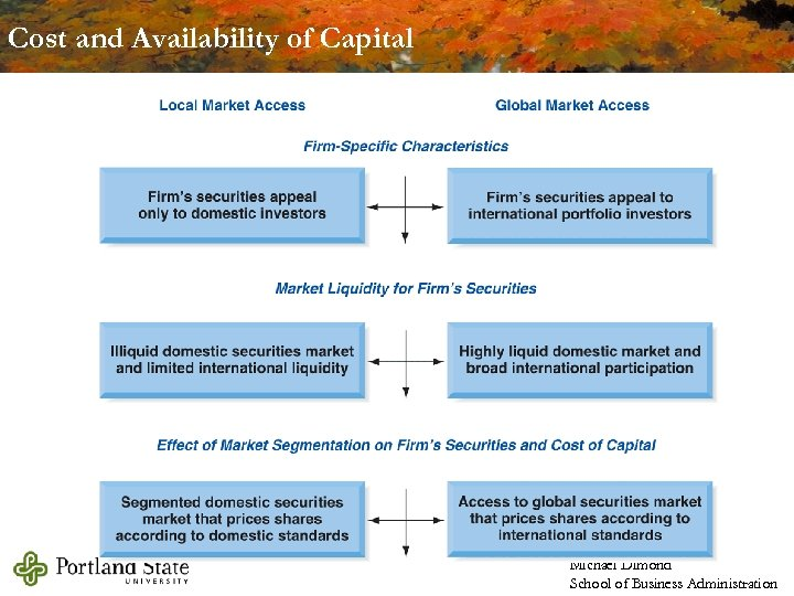 Cost and Availability of Capital Michael Dimond School of Business Administration