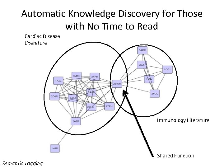 Automatic Knowledge Discovery for Those with No Time to Read Cardiac Disease Literature Immunology
