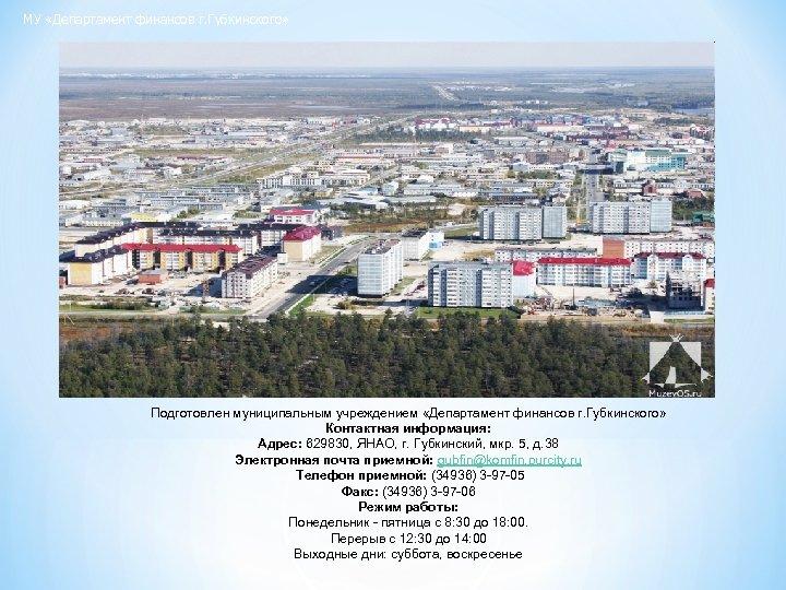 МУ «Департамент финансов г. Губкинского» Подготовлен муниципальным учреждением «Департамент финансов г. Губкинского» Контактная информация: