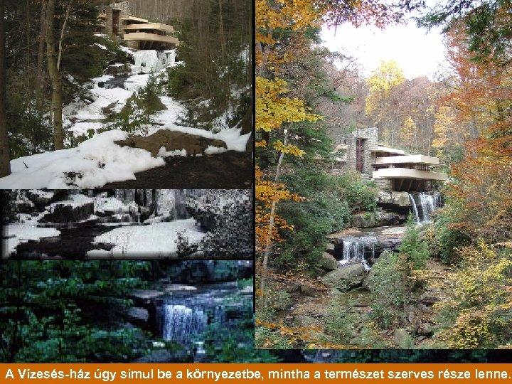 A Vízesés-ház úgy simul be a környezetbe, mintha a természet szerves része lenne.