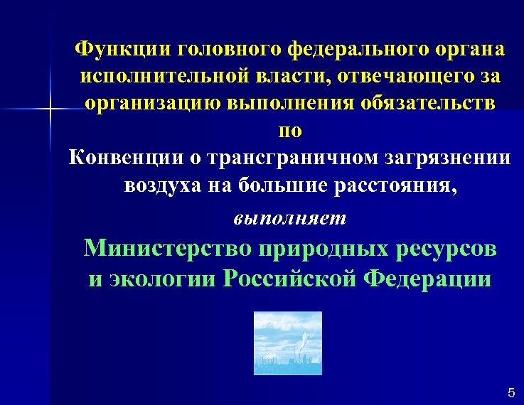 Функции головного федерального органа исполнительной власти, отвечающего за организацию выполнения обязательств по Конвенции о