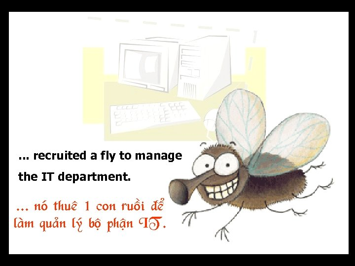 . . . recruited a fly to manage the IT department. . noù thueâ