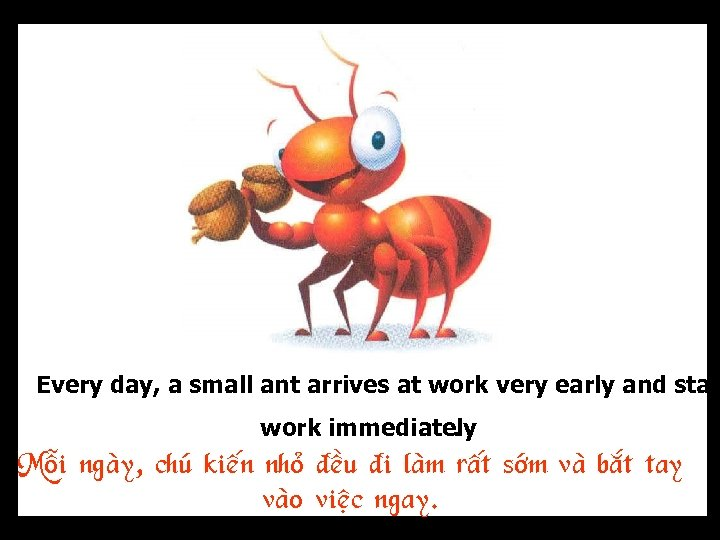 Every day, a small ant arrives at work very early and star work immediately.