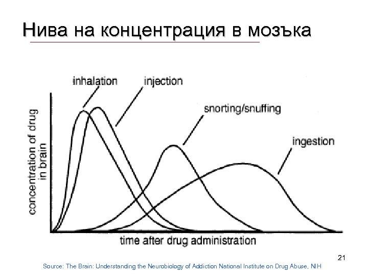 Нива на концентрация в мозъка 21 Source: The Brain: Understanding the Neurobiology of Addiction