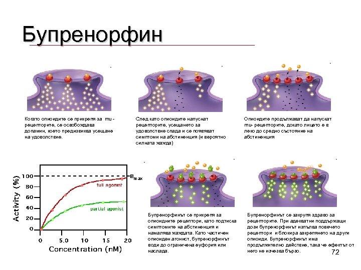 Бупренорфин Когато опиоидите се прикрепя за mu рецепторите, се освобождава допамин, което предизвиква усещане