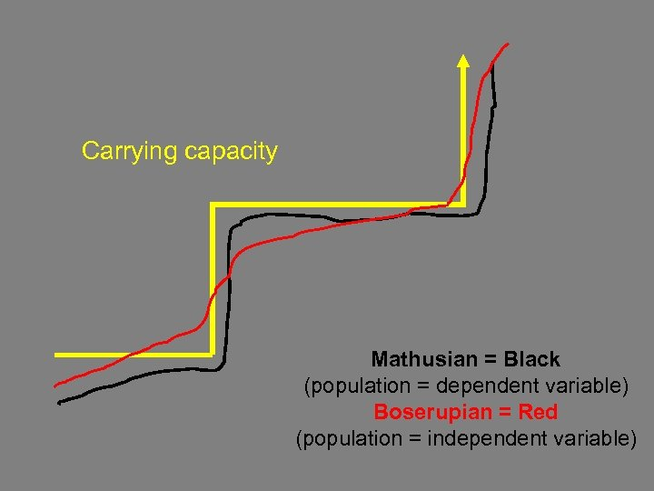 Carrying capacity Mathusian = Black (population = dependent variable) Boserupian = Red (population =