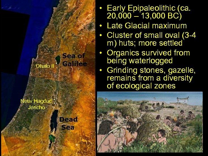Ohalo II Netiv Hagdud Jericho • Early Epipaleolithic (ca. 20, 000 – 13, 000