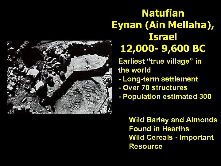 """Natufian Eynan (Ain Mellaha), Israel 12, 000 - 9, 600 BC Earliest """"true village"""""""
