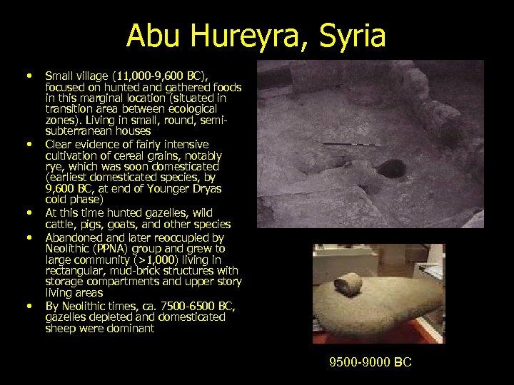 Abu Hureyra, Syria • • • Small village (11, 000 -9, 600 BC), focused