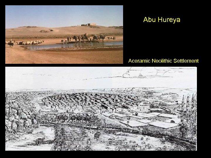 Abu Hureya Aceramic Neolithic Settlement