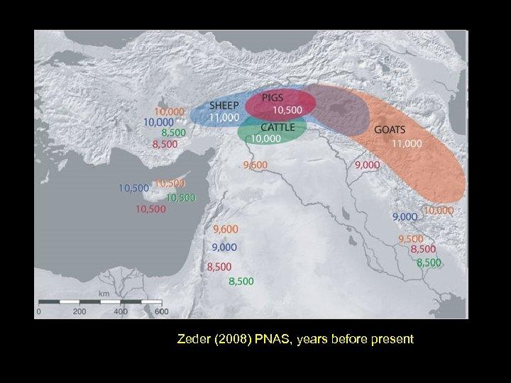 Zeder (2008) PNAS, years before present